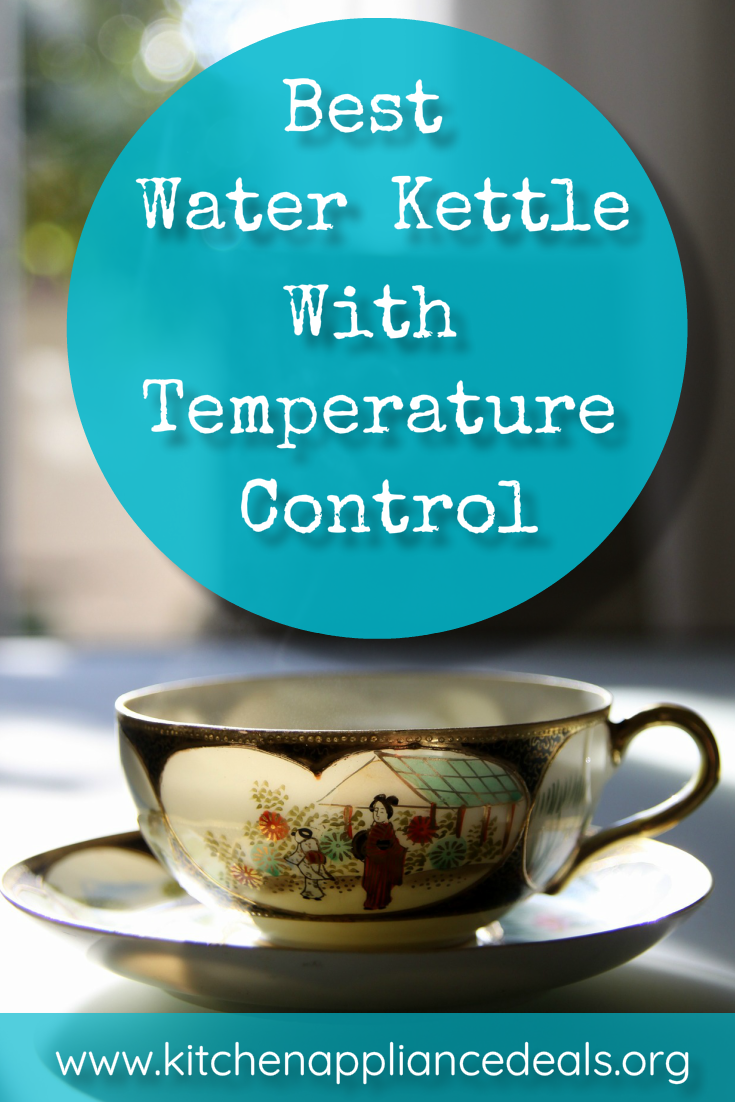 best water kettle with temperature control